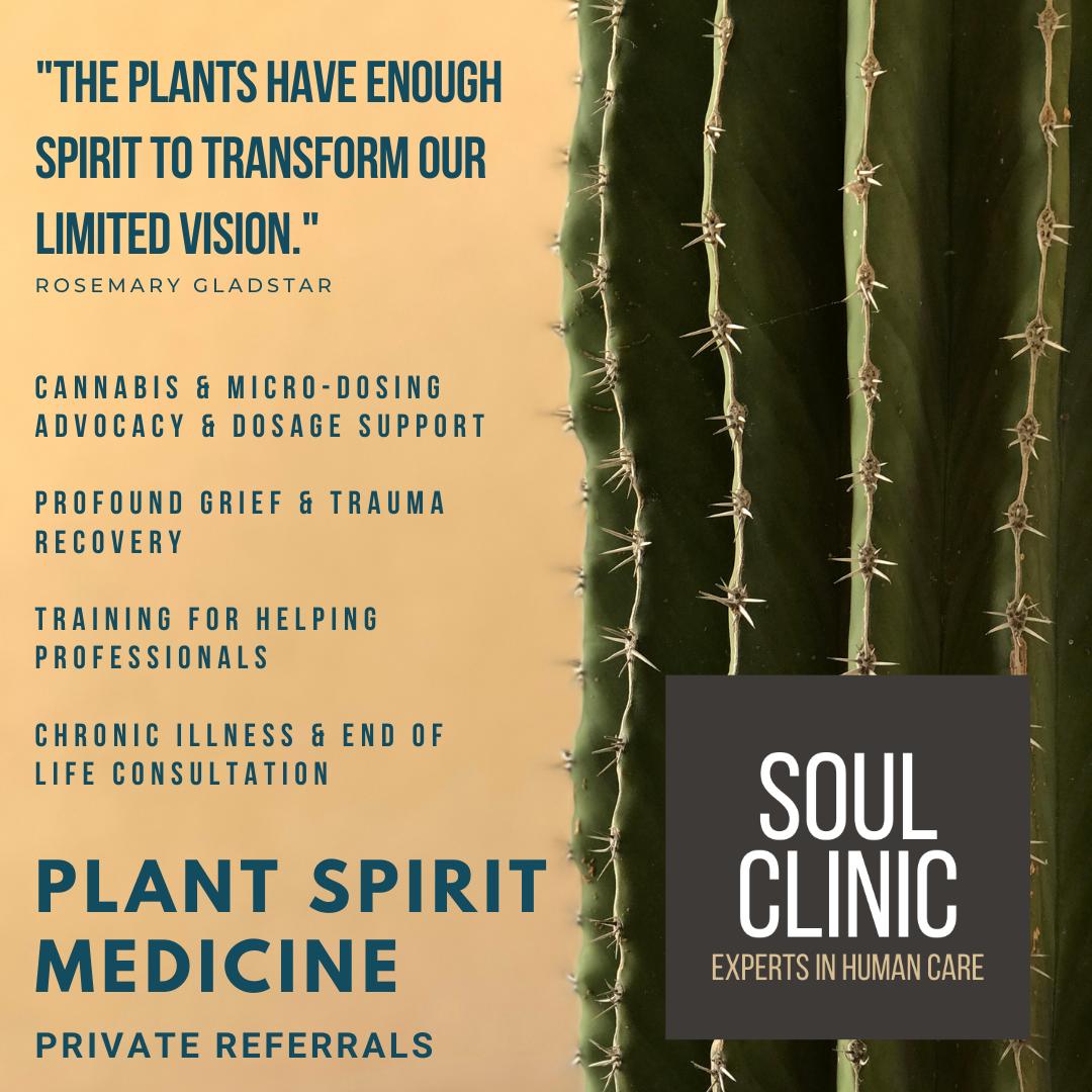 20-Plant Spirit Medicine